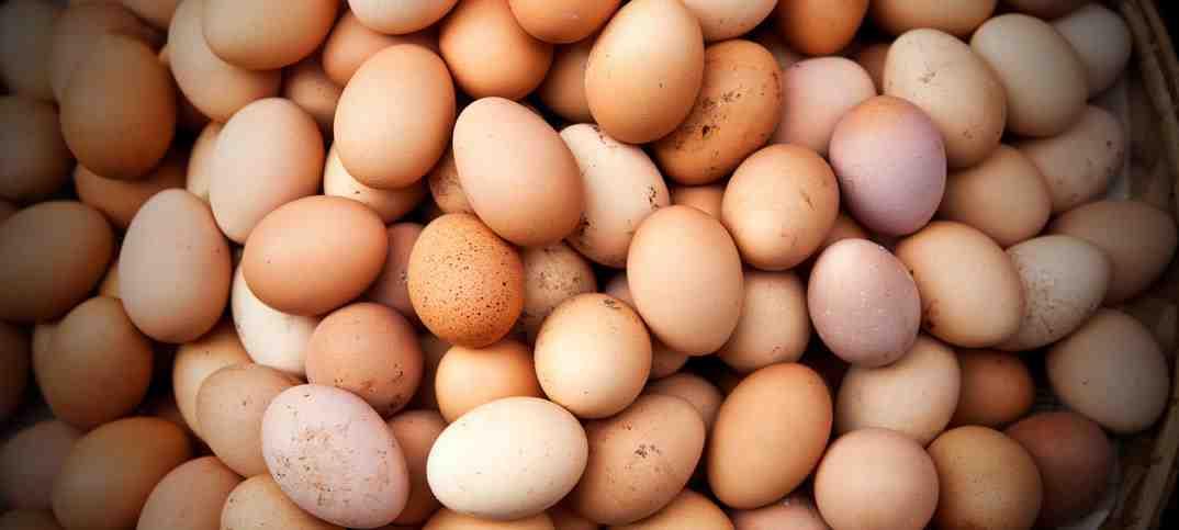 I tempi di cottura di un uovo sodo, alla coque, fritto o in camicia